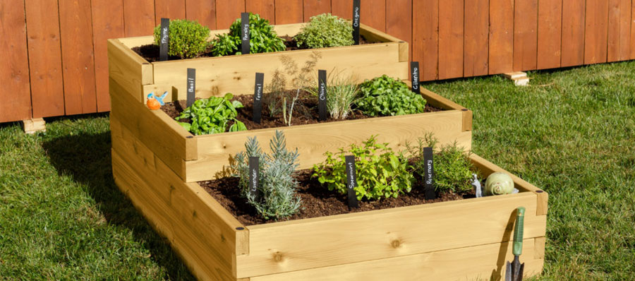 A Comprehensive Guide on How to Build a Raised Garden Bed